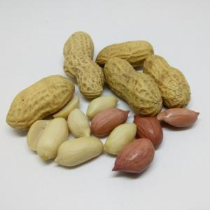 ピーナッツの栄養と健康効果|薄皮の栄養や食べる目安についても