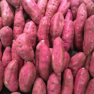 サツマイモの栄養と効能 食物繊維や熱に強いビタミンCなど