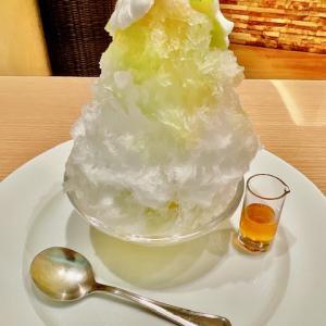 【羽田空港】期間限定で全8種類のかき氷を提供!第1ターミナル2階「ル・シエール」