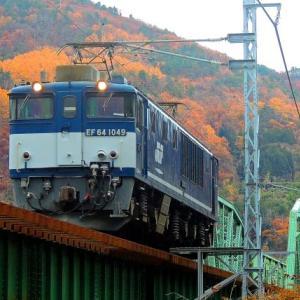 11/28 名残の紅葉に映える濃紺のロクヨン機関車