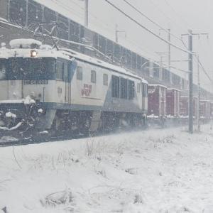 3/29 春の大雪 今日のロクヨンは1008号機