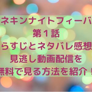 マネキンナイトフィーバー第1話のあらすじは?見逃し動画配信を無料で見る方法!