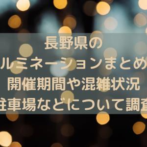 長野県のイルミネーションまとめ!【2020-2021最新版】