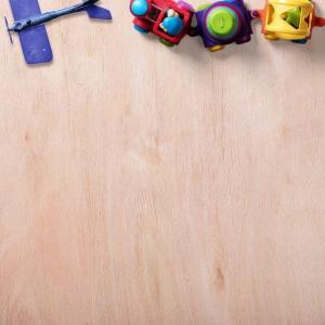 自閉症児育児‗個別療育の息子の様子、指導員さんとのお話