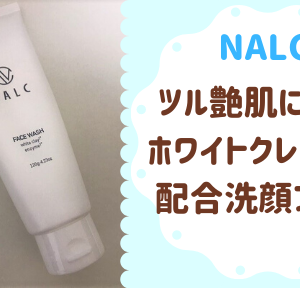 メンズも使えるホワイトクレイ酵素配合洗顔フォーム NALC