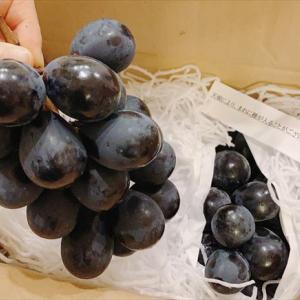 【ふるさと納税】ナガノパープル 皮ごと食べられる甘~いブドウは巨峰以上のおいしさ!?