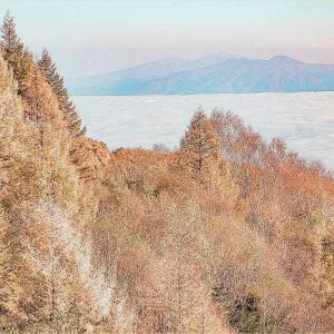 大河原峠付近の雲海と黄葉