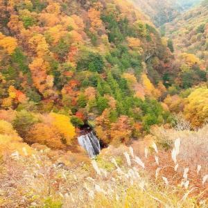 横谷渓谷王滝の紅葉 2