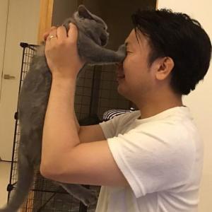 飼い猫 チョビ日記① 〜拭えぬ距離感〜