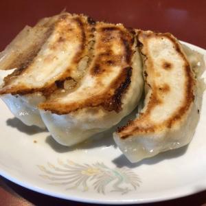 超巨大な餃子が有名な手揉み麺、キング餃子「彩花」 過去最大級の大きさの餃子にもっちり麺のラーメンを堪能