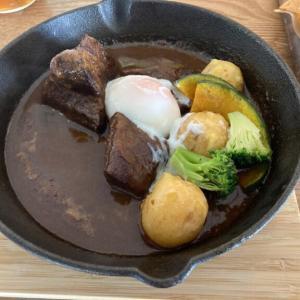 宇都宮中央にカフェがオープン「Habit Kitchen」 こぶし大の牛タンが嬉しいランチ限定牛タンシチュー