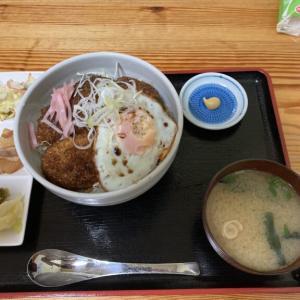 ボリューム満点!「めしぱく食堂」 栃ナビコラボの大盛ソースカツ丼を食べてみる