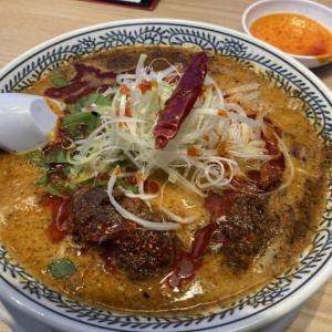 宇都宮環状線沿い「丸源ラーメン」に初訪問 辛さ痺れる麻辣担々麺を食べてきた