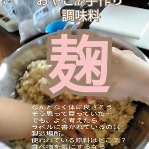 おやこde手づくり調味料 【発酵×麹】体に入れる事より、毒を出すことに気を向ける!