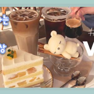 こんなアイデアがあったの!?可愛すぎるベア🐻ガード❤︎韓国カフェ