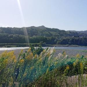 最終盤の大野川へ