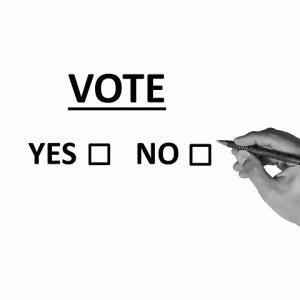 参議院埼玉補選で上田氏が勝利も、あの「N国党」と超・低投票率での戦い?