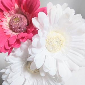 【セリア】初夏にピッタリな可愛いガーベラ♡