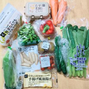 【らでぃっしゅぼーや】旬の新鮮野菜盛りだくさんなお試しセット♪