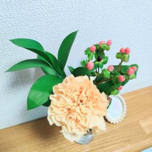開けた瞬間癒された♡お部屋がパッと明るくなる可愛いお花の定期便♪