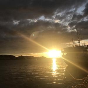 花暮岸壁夜の部。エギングでアオリイカの数釣りなるか?!その2