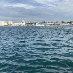 城ヶ島の岸壁で大型のメジナ狙いリベンジ