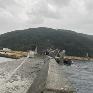 雨だけど福浦岸壁と小さな漁港へ行ってみた 伊豆下田遠征 #4