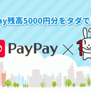 【後編】PayPayに2万円チャージして5千円分のPayPay残高をゲットする方法を詳しく解説
