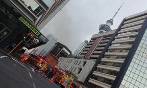 ニュージーランド火災!!