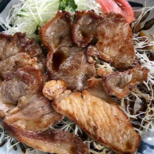 「大食館、佐野市グルメ」