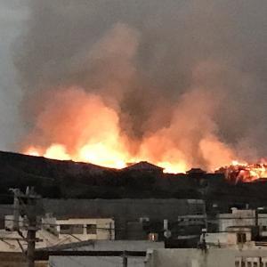 首里城が燃えてしまいました。