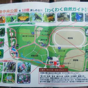 424ストローク     ピクニックへ行こう!大泉中央公園 編  ②