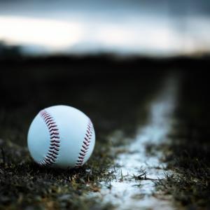 今日10月17日は、待ちに待ったプロ野球ドラフト会議です。
