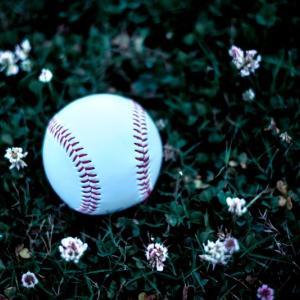 感動のプロ野球ドラフト会議。星稜の奥川恭伸投手と山瀬慎之助捕手、プロでの活躍を期待しています。