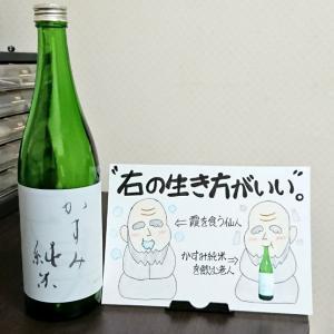 【天寿 かすみ純米 生酒】の感想・評価:おだやかな酸味とゆるやかな消え味。飲みやすさに驚くこと間違いなし!