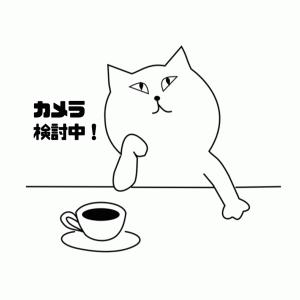【体験談②】カメラをオンにするまでのストーリー(初受講カメラなし)