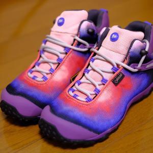 世界一周の靴は重要なんだよ