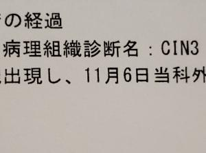 【闘病記】がん保険について(CIN3)