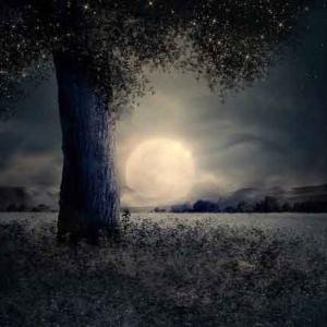 【占星術ブログ 新月満月】双子座の満月と山羊座の新月 「じっくりと会話をすることでの気づき」【2019年12月】
