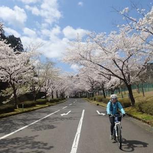 春慶寺から健康の森
