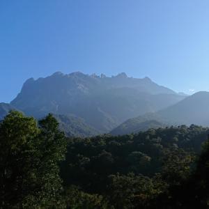 キナバル公園の住人が教える!キナバル山を綺麗に撮影するコツ