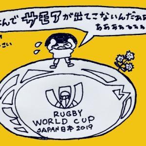 ラグビーワールドカップ2019 出場国は?出場権は?対戦国は?