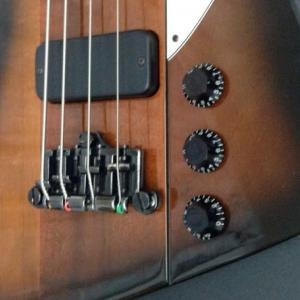 Thunderbird BassのブリッジをHIP SHOTに換えてみた