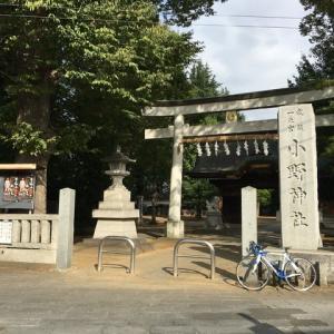 一ノ宮小野神社に参拝