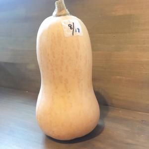 …バターナッツかぼちゃで巨大かぼちゃプリン ☆2