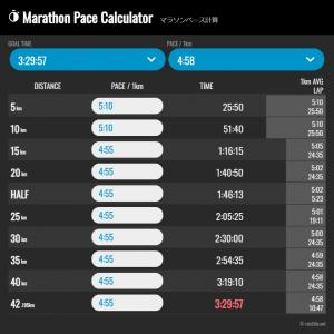 東京マラソンをどう走る?