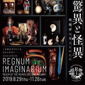 【大阪万博公園】国立民俗博物館~驚異と怪異-想像界の生きものたち~レビュー