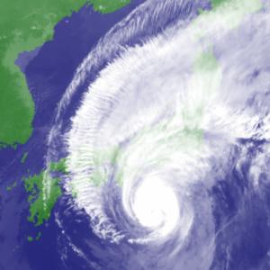 台風19号は気象戦争で、幾つかのダムの水門が被害拡大のために意図的に開かれた(stuxnet?)?