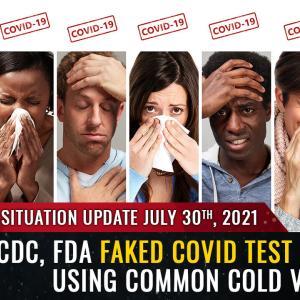 速報:CDC、FDAは、一般的な風邪ウイルスフラグメントと混合されたヒト細胞を使用して「covid」テストプロトコルを偽造しました…PCRテストは単に一般的な風邪を検出しているだけです