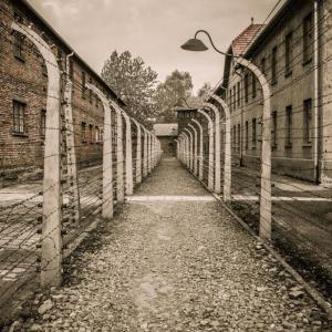 彼らを隔離収容所に投棄した後、ドイツ政府も彼らを破産させるために補償金を剥奪した。